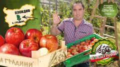 Защо наричат ябълката плод-градина