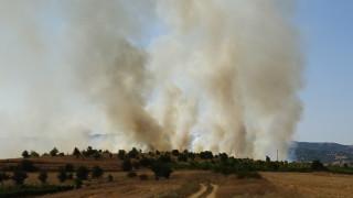 20 военни гасиха пожарите в Хасковско