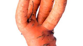 """Подводни """"ГМО камъни"""" в Закона за храните"""