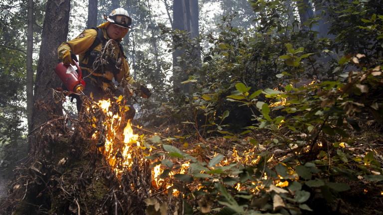 Четири нови пожара в Хасковско