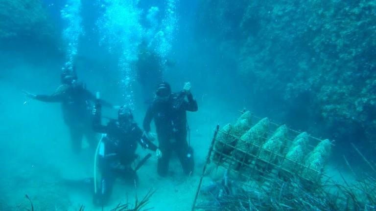Подводната винарна в Хърватия