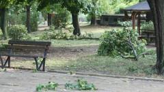 Намериха мъртво 18-годишното момиче от Димитровград