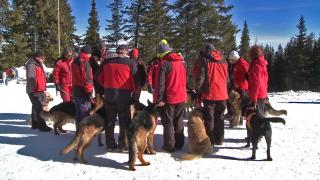 Планинските спасители искат по-бърз достъп до данни на мобилните оператори