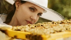 Анджелина Джоли - с ново поприще