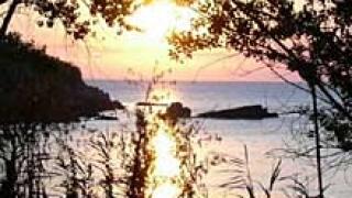 Собственик на хотел и деца се сбиха в Черноморец