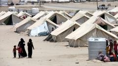 Хиляди иракски семейства са разселени от Фалуджа