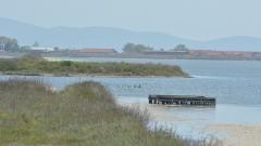 Незаконен остров довел до екокатастрофа в Поморийското езеро