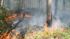 Голям пожар бушува в Хасковско