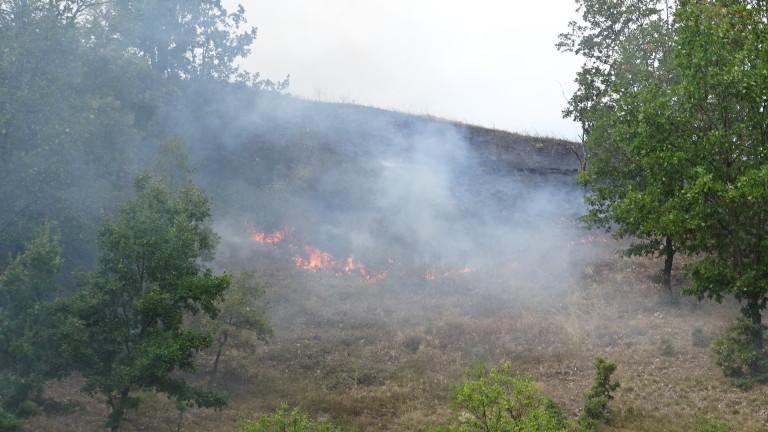 Четири пожара горят в горите на Варна