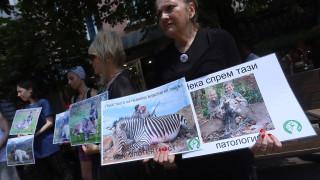 Веганите настояват за криминализиране на лова