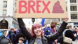 Брекзит - британците трябва сами да се спасят от пропастта или да паднат в нея