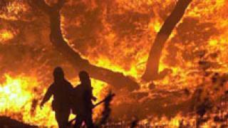 Възрастен мъж пострада при горски пожар