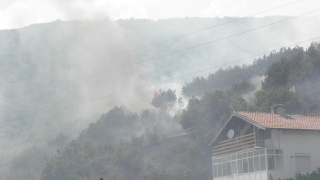 Гори около 100 дка гора край благоевградското село Железница