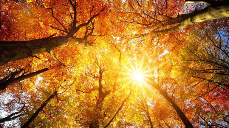 Есента остава топла