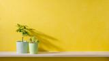 Пречистващите ползи на някои интериорни растения