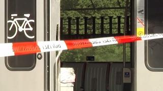 Нападателят в швейцарския влак не е познавал жертвите