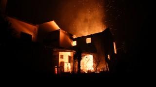 Най-малко 62 загинали при горски пожари в Португалия