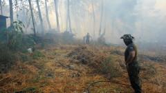 Огнеборци борят пожара в Гърция в района на Вилия