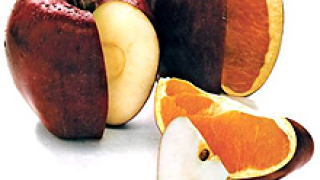 """Вафлите ни -  """"първенец"""" по ГМО"""