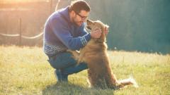 Как да говорим на кучето си
