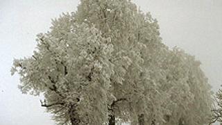Пътищата в Кюстендил готови за зимата