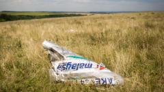 """Медии: В района на сваления MH17 не е имало """"Бук"""""""