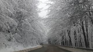 "Катастрофа в Креснснското дефиле, обилен снеговалеж в прохода ""Предел"""