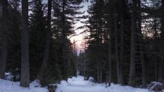В четвъртък продължава издирването на сноубордиста в Рила