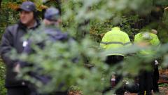 Откриха нелегални мигранти, крили се в гората край Елин Пелин