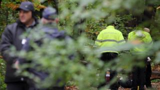 Две деца се загубиха в гора край Свиленград - издирваха ги цяла нощ