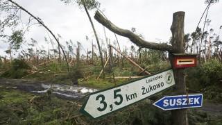 5 души загинаха от бури и паднали дървета в Полша