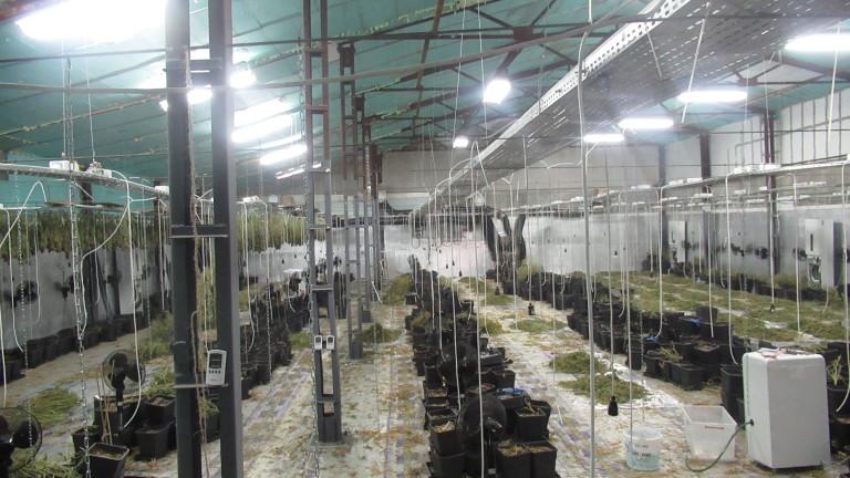 Сръбски инвеститор щял да произвежда каравани на мястото на наркооранжерията в Русенско