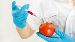 ДАЗД не знае деца да участват в реклами на ГМО храни