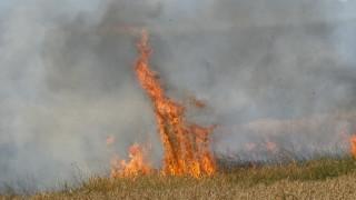 Пожар избухна в покрайнините на Пловдив