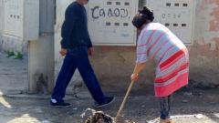 "Жители на пловдивския ""Столипиново"" искат контейнери и чистота"