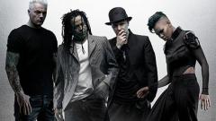 Skunk Anansie издават акустичен концертен албум