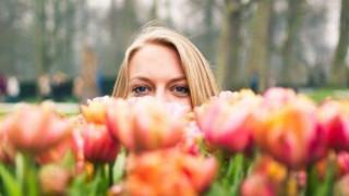 Холандия отново е цветна градина