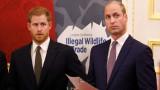Как Уилям и Хари защитиха Гарет Томас