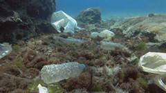 Замърсяването с пластмаса на планетата може вече да е непоправимо
