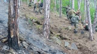 "С вертолет ""Кугар"" гасят пожара над Карлово"