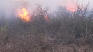 Втори пожар пламна край Благоевград