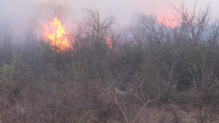 Пореден пожар, лумнал от човешка небрежност
