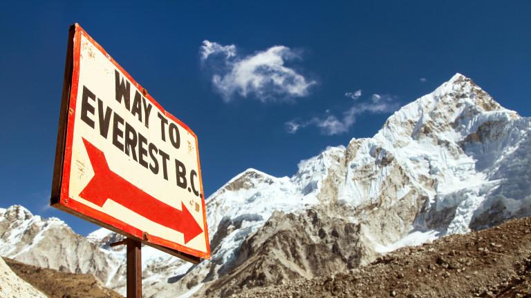 Храсти и треви се повяват около връх Еверест и изобщо