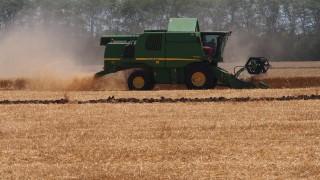 Цените на царевицата, памука и пшеницата са скочили с над 50% за година