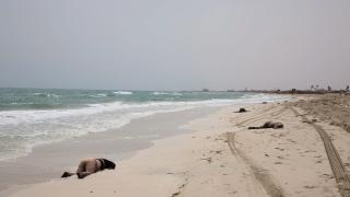 Трафиканти избиха 22-ма африкански мигранти на плаж в Либия