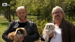 Хомосексуална двойка и семейство дебелаци влизат в шоу