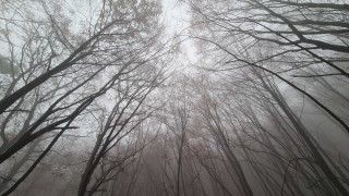 Мъглива и облачна неделя