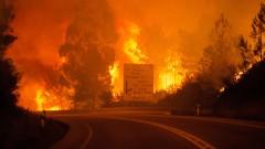 Отново горски пожари в Португалия