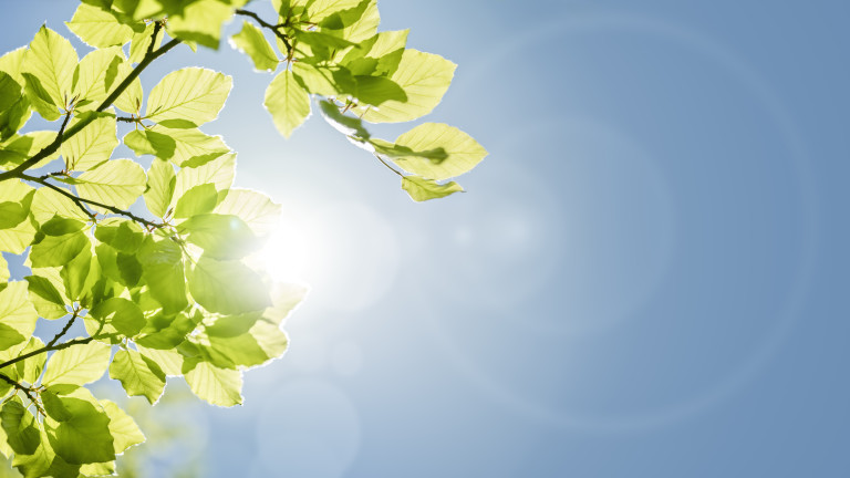 Слънчев и топъл петък