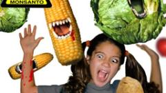 Депутатите не знаят какъв Закон за ГМО гласуват